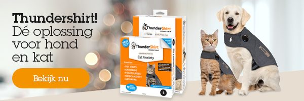 Banner blog thundershirt