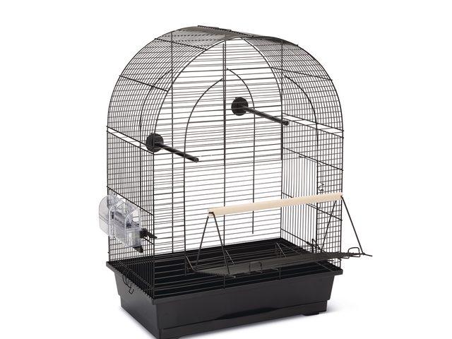 Vogelkooi In Huis : Een mooie kooi voor jouw huisdier westwing